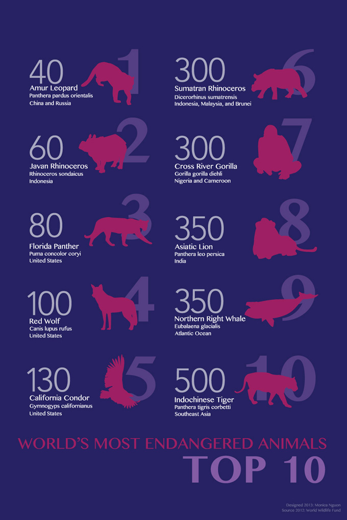 Top Ten Most Endangered animals 2012